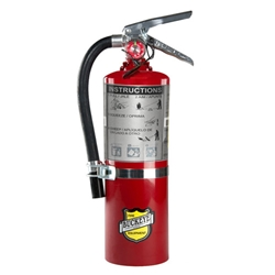 10 lb ABC Dry Chemical Fire Extinguisher from Buckeye