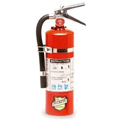 5 lb ABC Dry Chemical Fire Extinguisher