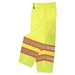 Surveyor Safety Pants, Class E  from Radians